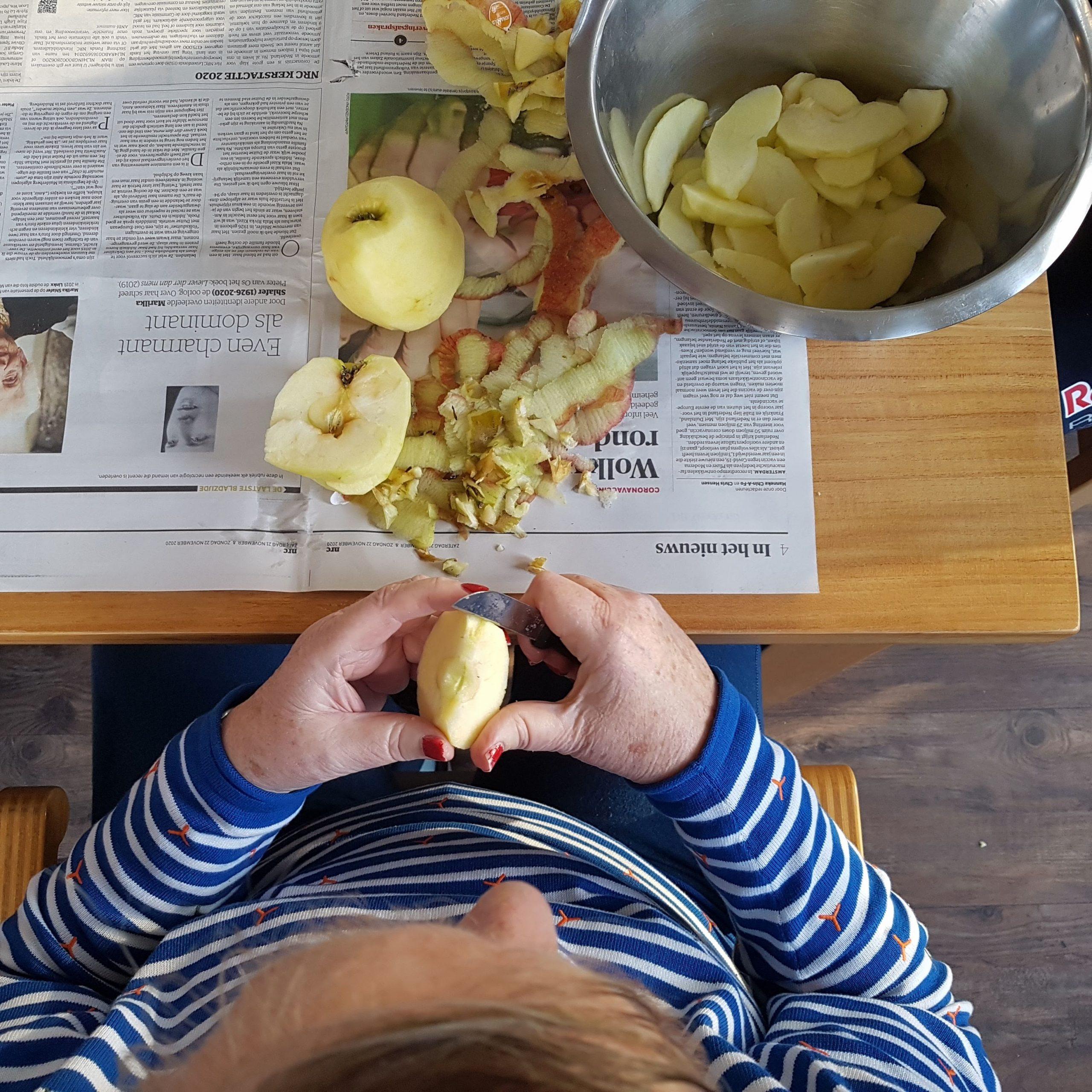 gebakken appeltjes